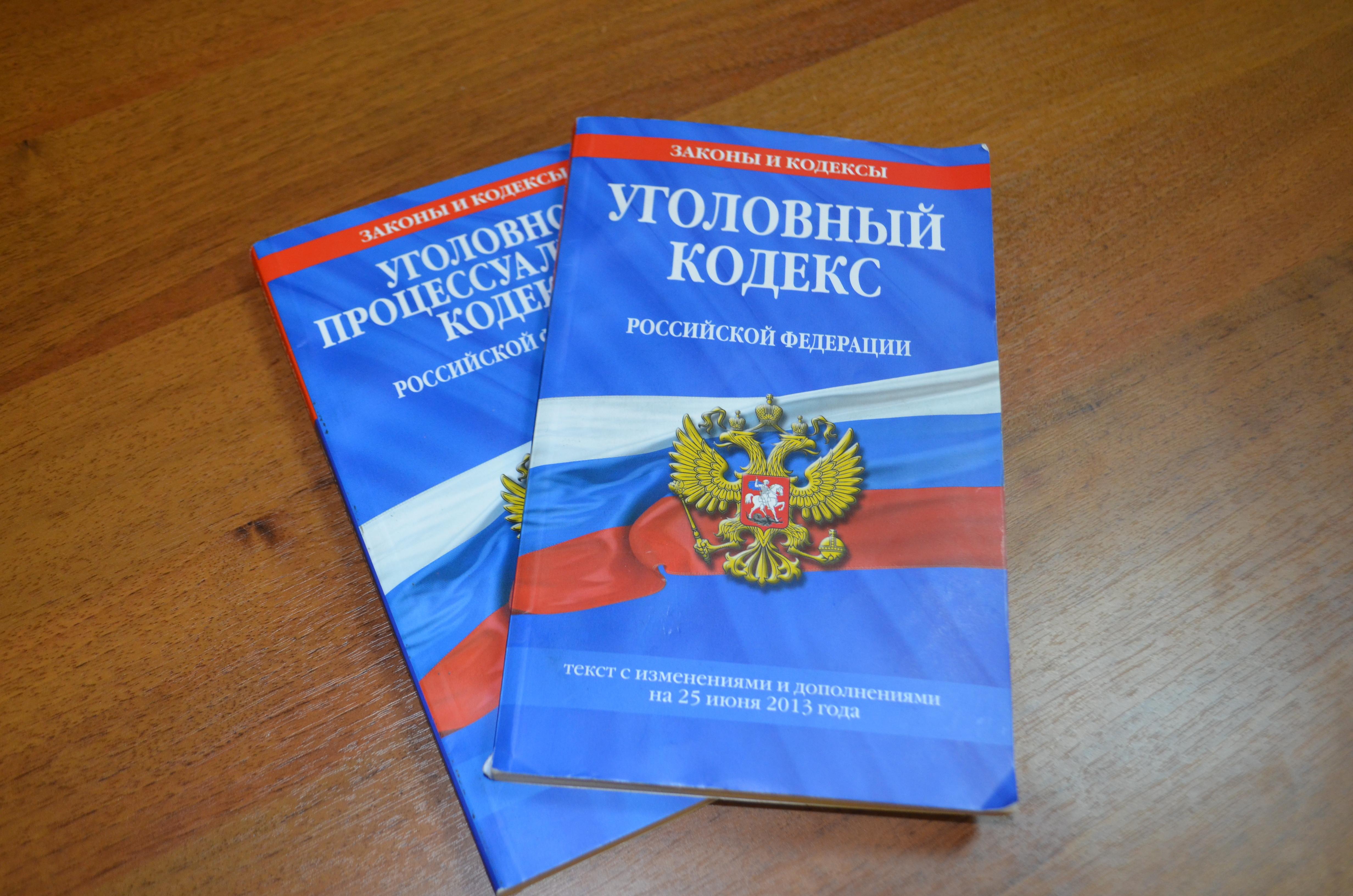 ВБелгородской области рецидивист зарубил тесаком многодетную мать