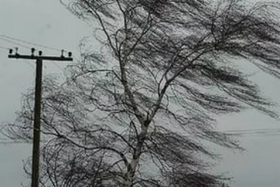 ВОмской области объявили штормовое предупреждение