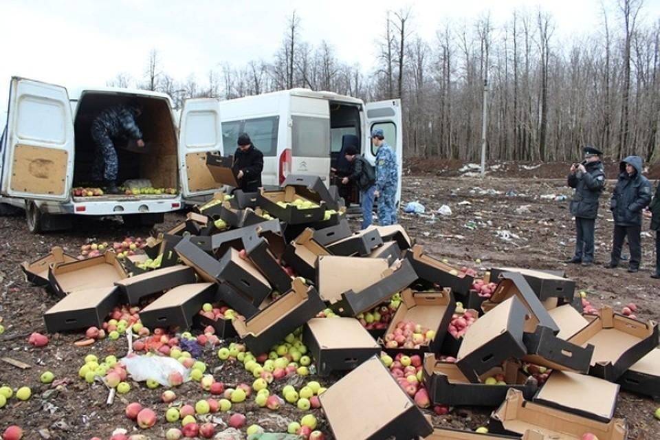 ВПерми уничтожили неменее 2-х тонн польских яблок