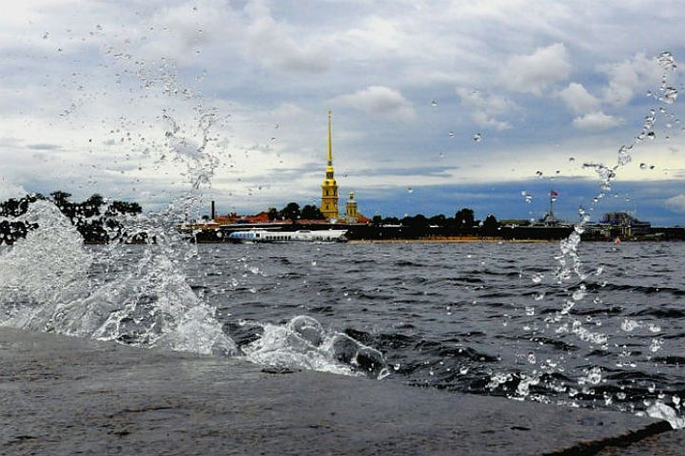 Мокий Мокрый иАлександр Колесов предвещают Петербургу дождливое лето