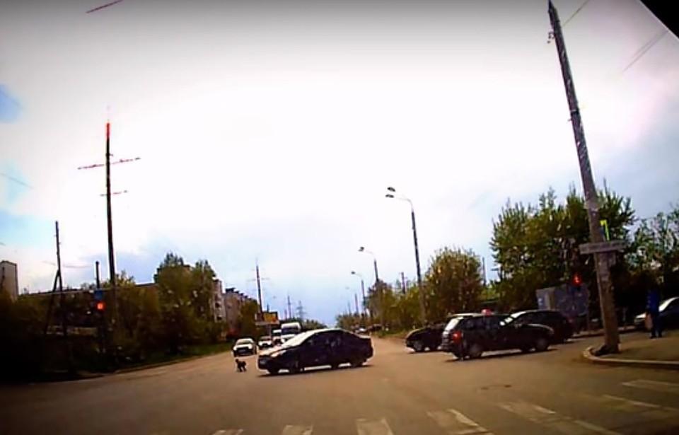 ВПерми наполном ходу ребенок выпал измашины среди дороги