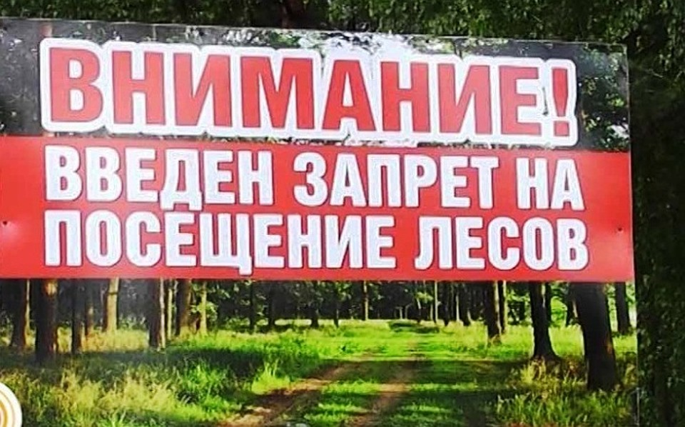 ВВолгоградской области с10июня нельзя ходить влес