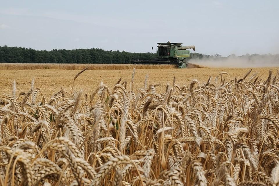 ВЧувашии введен режимЧС из-за угрозы погибели урожая