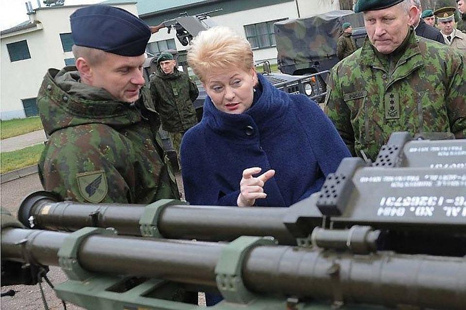 Грибаускайте: США удвоят количество истребителей навремя белорусско-российских учений «Запад-2017»