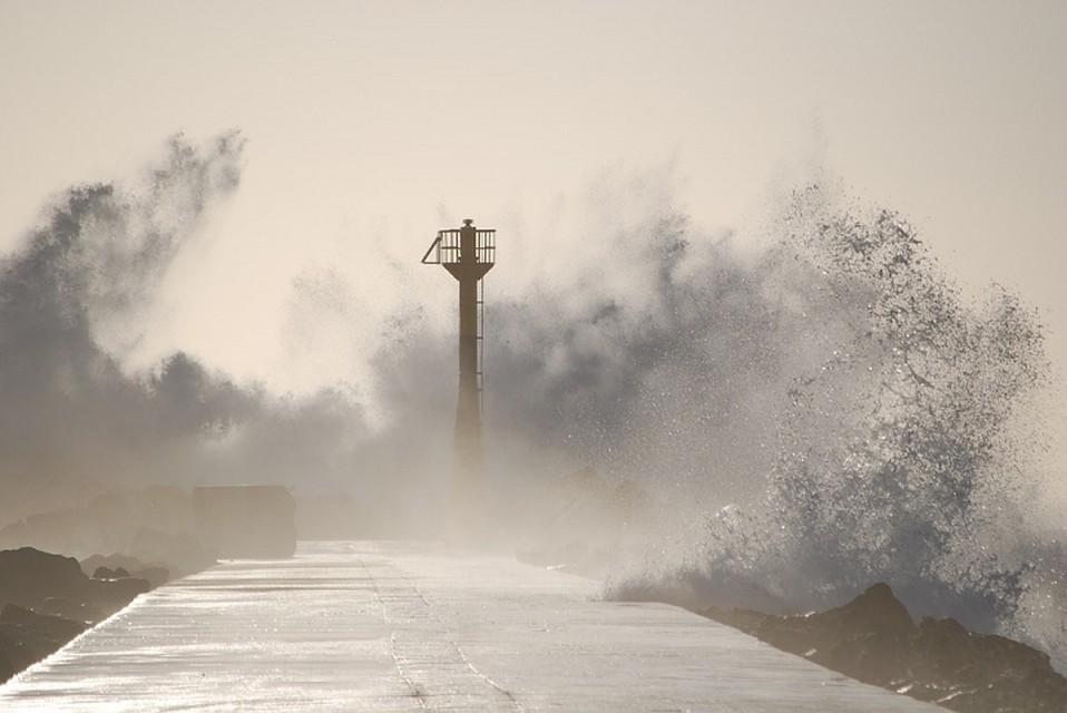 Приморье готовится кприходу грандиозного тайфуна «Нору»