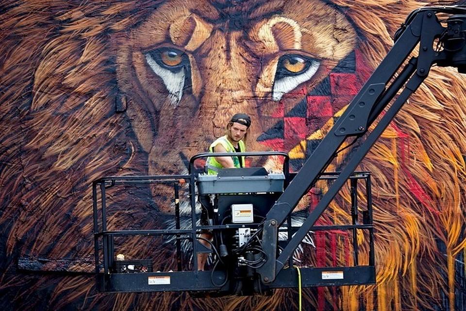 Немалый леопард украсит видовую площадку наЗолотой мост— Земля леопарда