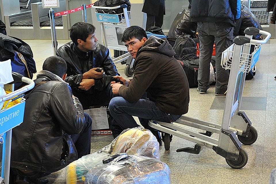 В Российской Федерации регулярно находится около 10 млн мигрантов— МВД