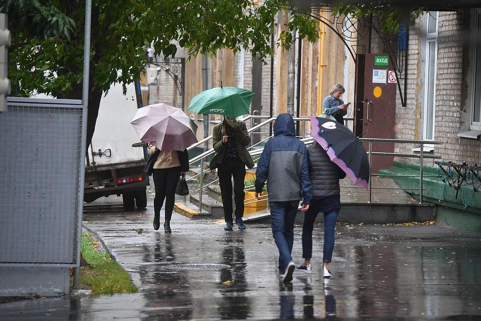 Дождь иветер: синоптики поведали опогоде навыходных вВоронеже