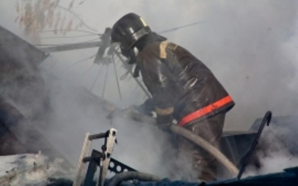 ВБашкирии впожаре всарае погибли 6 голов скота