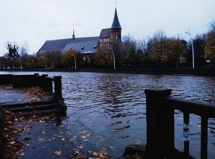 ВКалининграде из-за дождей затопило городскую поликлинику №2