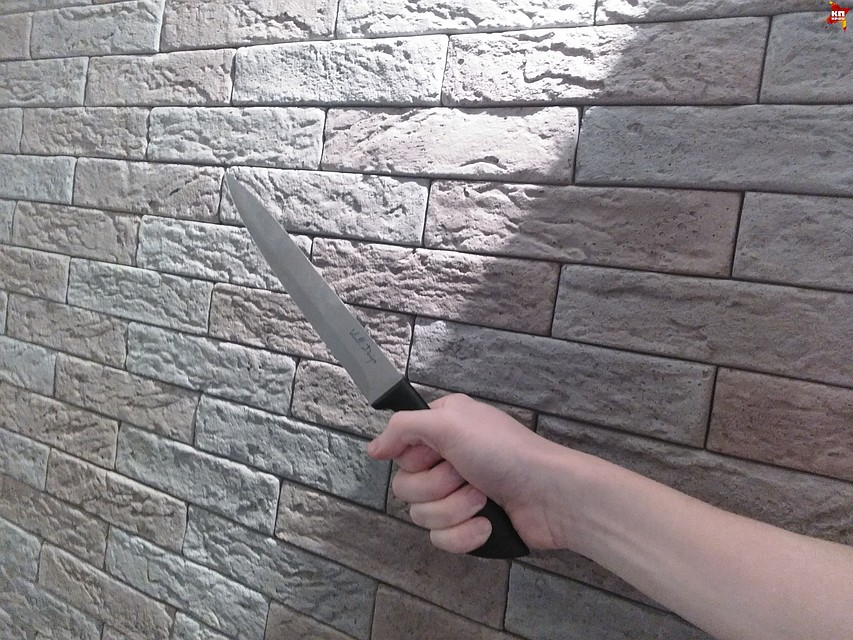 ВВоронежской области один сценарист всадил нож вдругого