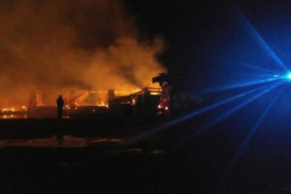 Впожаре вЯрославской области погибли животные