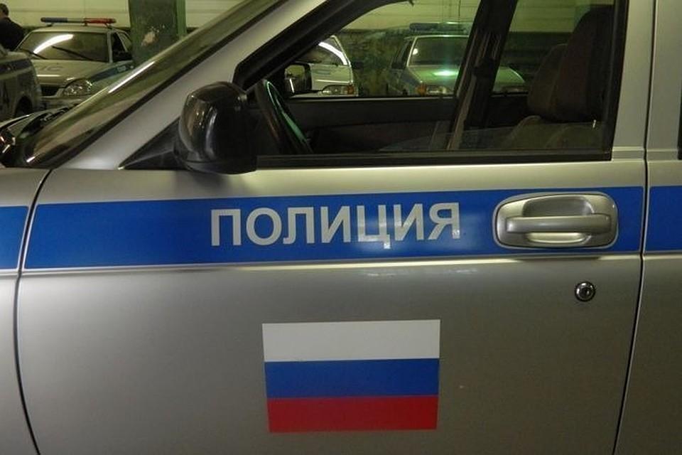 Последам наснегу удалось поймать мошенников вНовосибирской области
