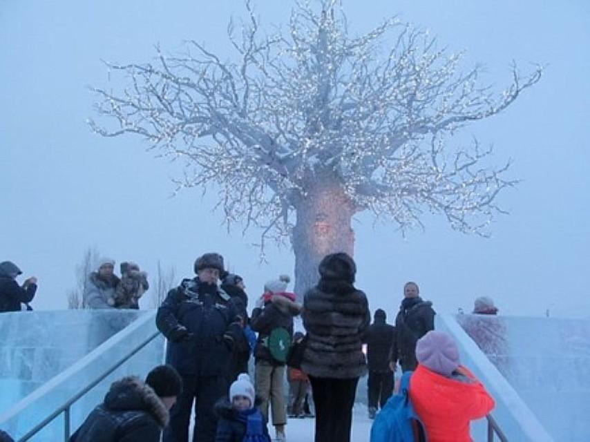 Вомском парке 30-летия ВЛКСМ появится чудный лес и магический замок