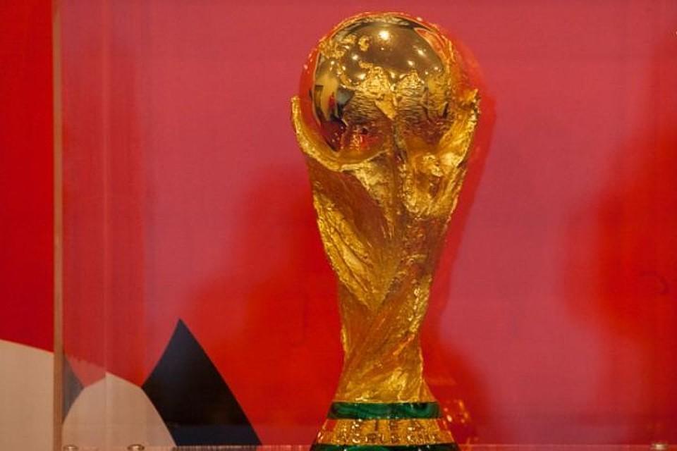 Кубок мира пофутболу доставят изКраснодара вСочи 21ноября