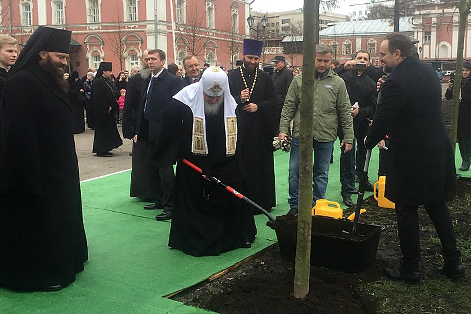 Патриарх Московский ивсея Руси иглава Минприроды открыли аллею Донского монастыря