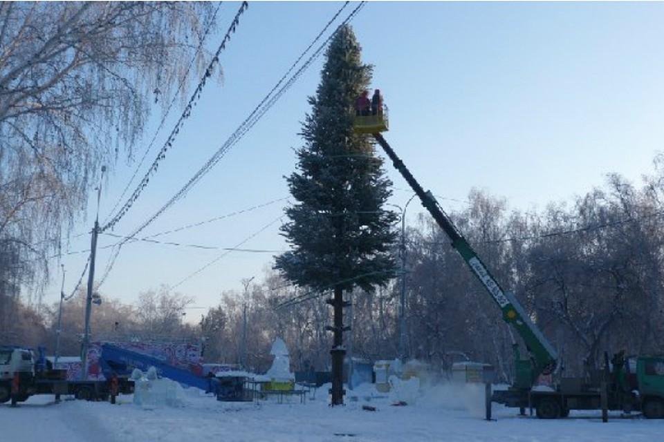 Главную елку Омска соберут из240 сосен