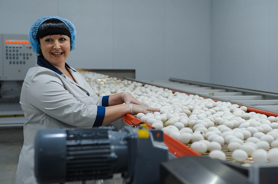 ВВоронежской области открылась новая птицефабрика за700 млн руб.