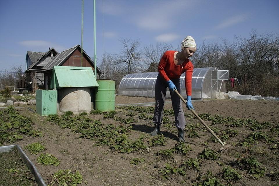 Пожилые люди ильготники недолжны оплачивать кадастровую стоимость земли— Путин