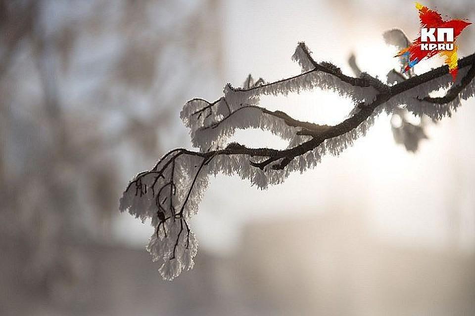 Академик рассказал о грядущем десятилетнем цикле похолодания на юге России