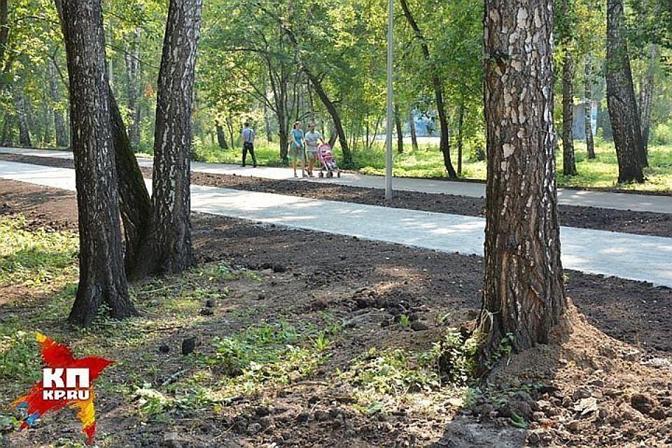 Взакон оЗНОП добавят 4 маленьких сквера вПетроградском районе