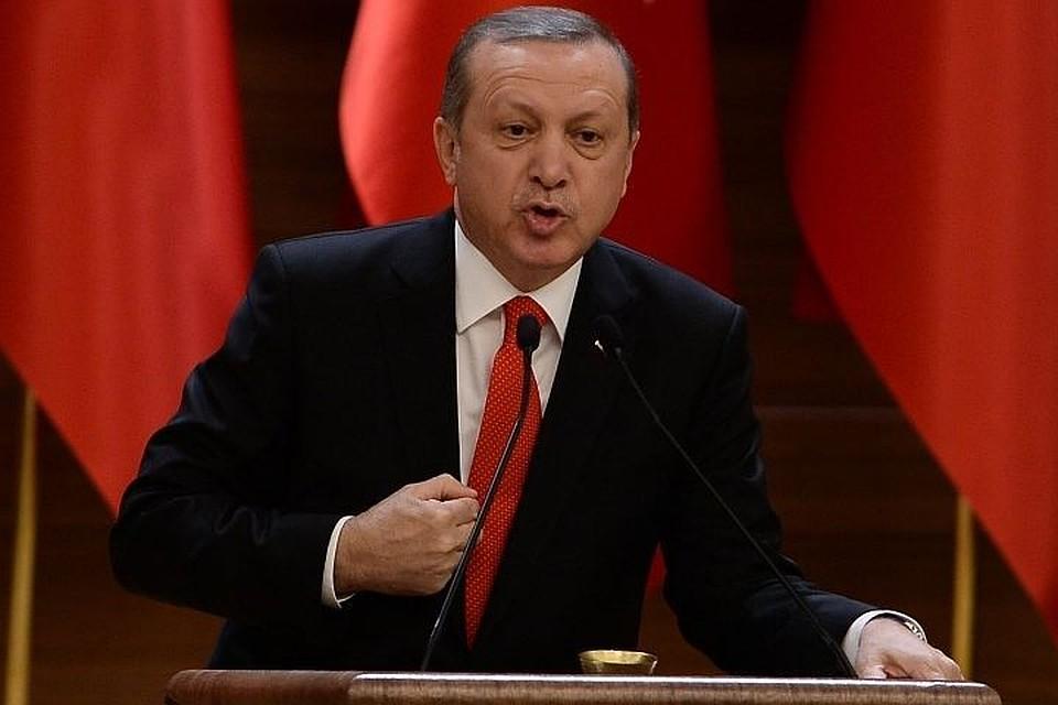 Эрдоган поведал опланах Анкары посрокам военной операции вАфрине