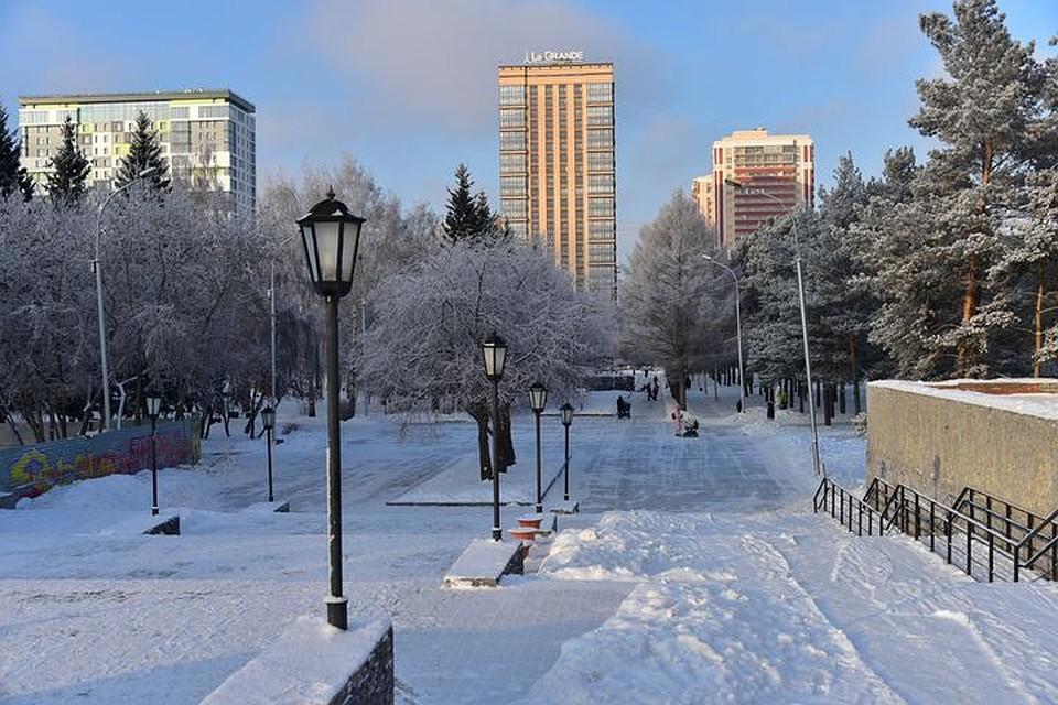 ВНарымском сквере Новосибирска найден труп мужчины