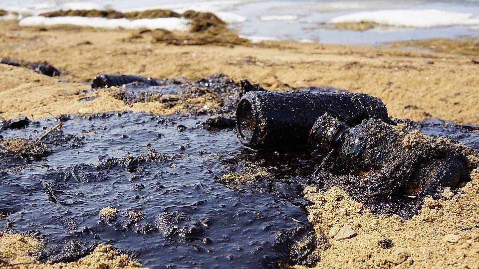 Власти Владивостока просят Минобороны очистить отнефтепродуктов берег Амурского залива