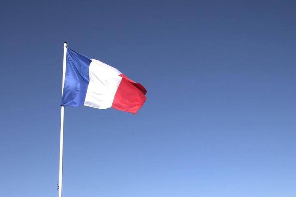 Половина картин французского музея оказались подделками