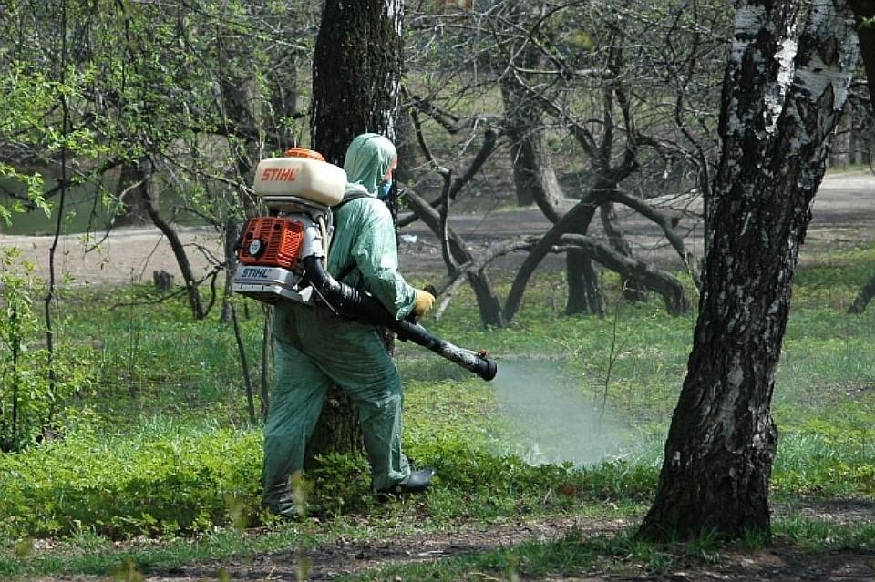 ВРостовской области зарегистрированы случаи заболевания смертельно-опасной инфекцией