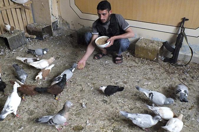 Несмотря на многомиллиардные денежные вливания Катара, несмотря на 50 тысяч наемников – Сирия держится