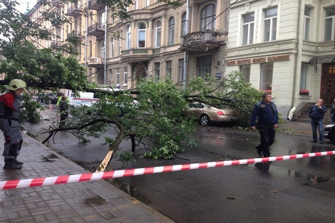 в центре петербурга дерево упало на «бентли» и перекрыло доро