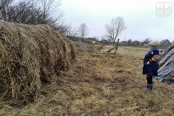Анастасия Ничипорук из деревни Оброво испугалась, что из-за НЛО загорится сено.