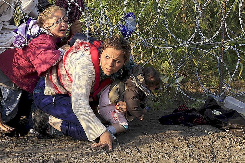 Германия становится целью путешествия для тысяч нелегалов, которые бегут от войны к сытой и спокойной жизни.
