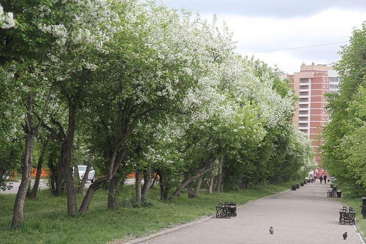 Работа студентам москва выходные