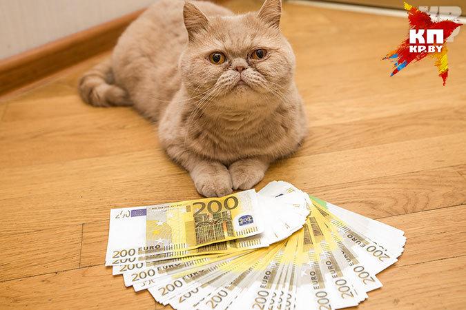 Внемецких банках хранятся «ничейные» 2млрдевро— Забытые миллиарды