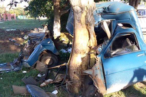 ВУспенском районе шофёр на«пирожке» врезался вдерево и умер