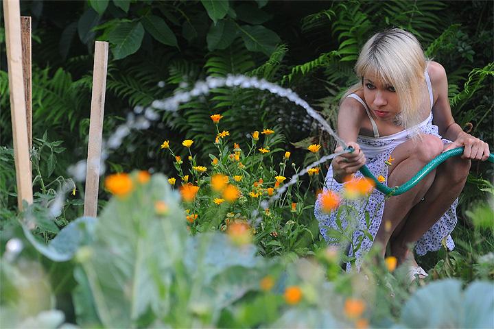 Южноуральские власти выделили 10 млн руб. наподдержку садоводов