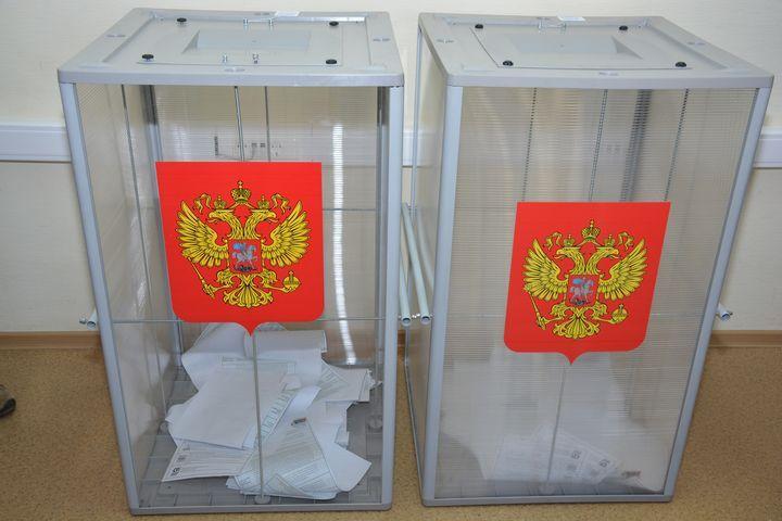 Явка навыборах вНовосибирской области недостигла 25% к15:00
