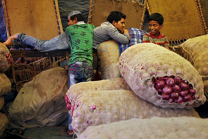 Египет вновь отказался оттребований о«нулевой спорынье» впшенице