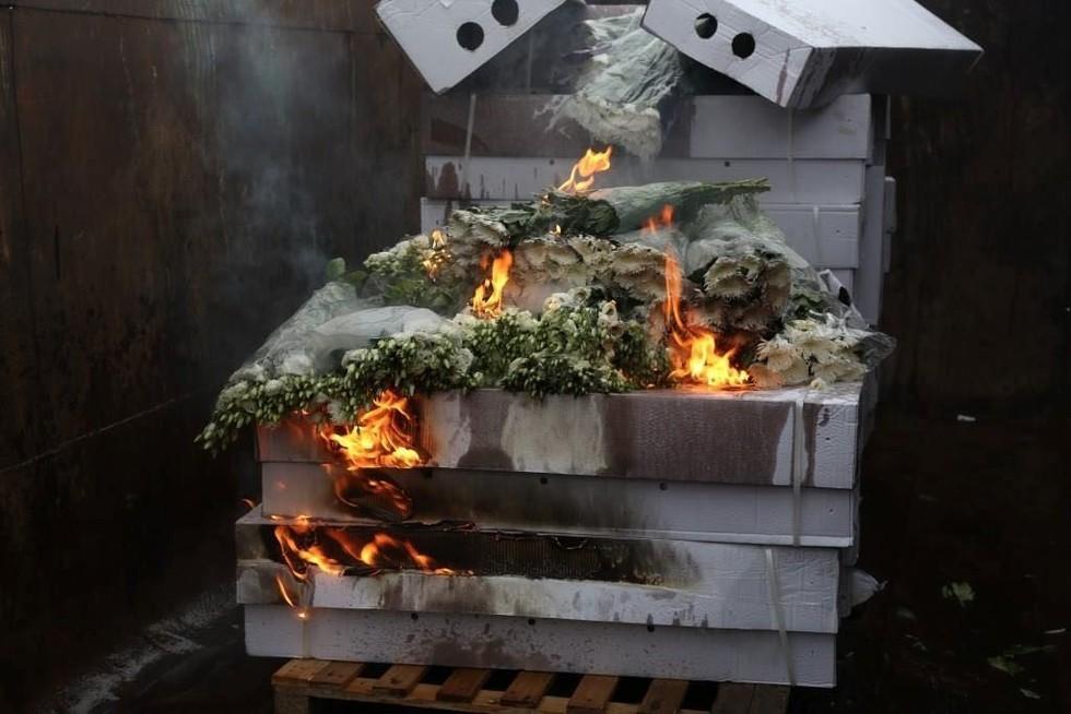 ВПетербурге сожгли 68 тыс. импортных цветов