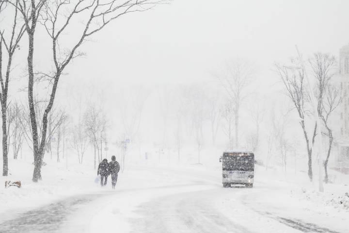 Снежный циклон отменил междугородние рейсы автобусов вПриморье