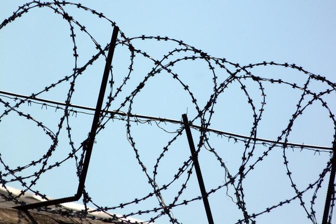 ВЮгре для отбывающих наказание вместах лишения свободы прошли образовательные курсы