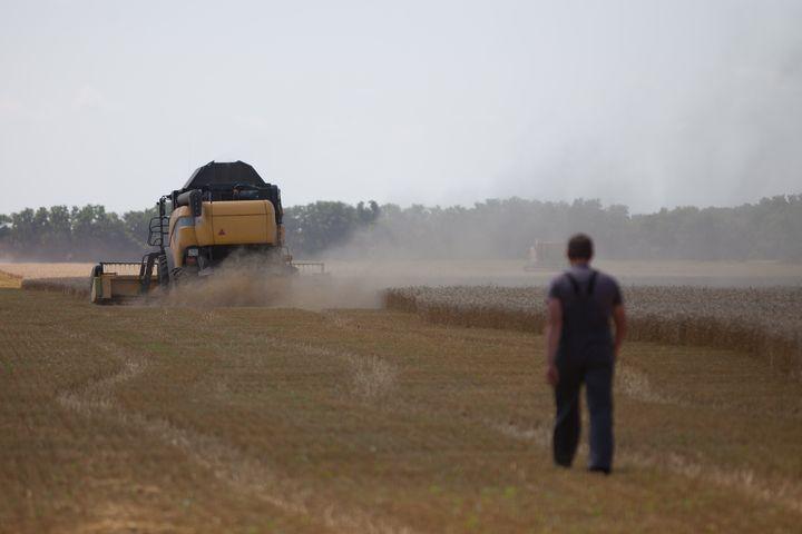 Фермеры-частники теперь едва ли смогут заниматься выращиванием зерна самостоятельно.