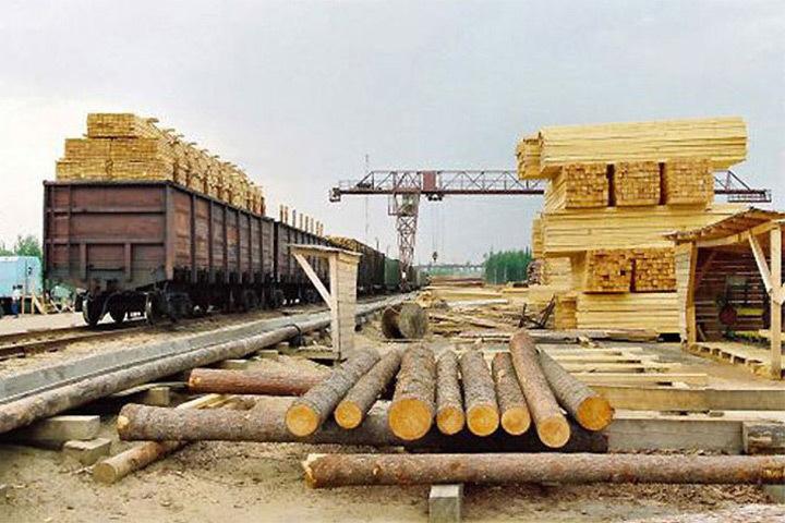 Экспорт Суоми в Россию снизился. Фото: с сайта pp.rkomi.ru