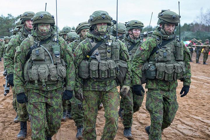 В Литве финишируют международные учения НАТО «Железный меч 2016». Фото: с сайта BaltNews.lt