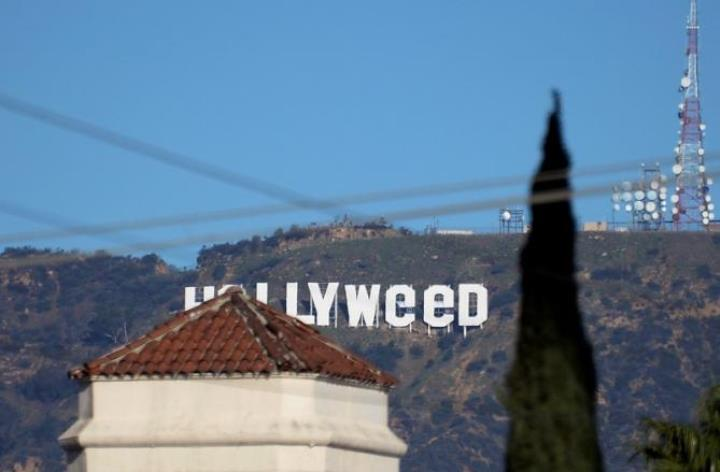 Вновогоднюю ночь надпись Hollywood превратилась вHollyweed