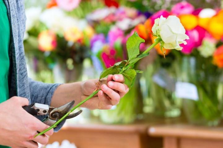 Два млн цветов проверили работники Россельхознадзора вУдмуртии втечении следующего года