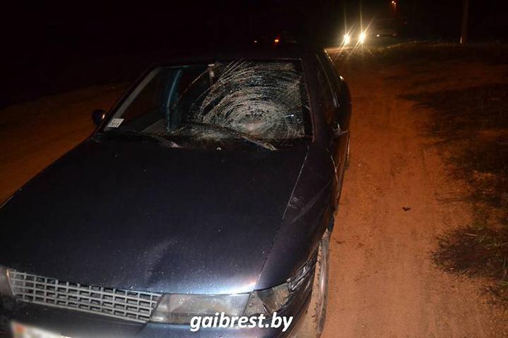 ВБрестском районе граждане деревни помогли поймать виновника ДТП