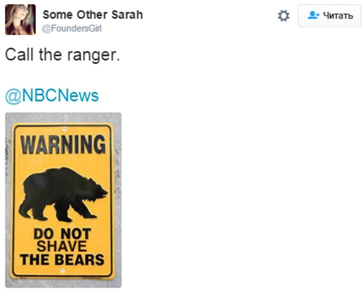 Острословы даже нарисовали табличку, запрещающую брить медведей Twitter/FoundersGirl